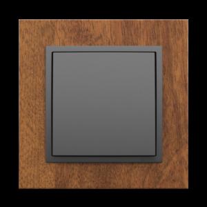 Одноклавишный выключатель  - Arbore MS