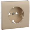 Лицевая панель Apolo 5000 для розетки 2к+З - платина